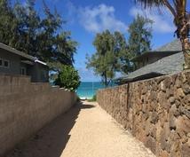 ハワイが好きな方の手助けします ハワイに来たことがない人も、ある人にもオススメ!