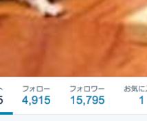 フォロワー1万人のツイッターアカウントであなたのツイートをつぶやきます