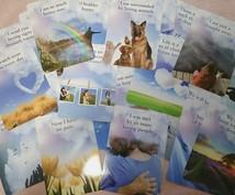 天国からあなたへ癒しのメッセージを贈ります ~愛する人やペットと心温まるひと時を~