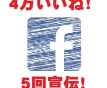 4万いいね!Facebookページで5回拡散します Facebookページで宣伝したい方へ!力になります!