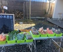 安心安全な野菜を使ってご飯を食べませんか?