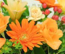 あなたの性格にあった花の名前と、花言葉をお伝えします