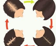 髪を習慣だけで全力で蘇らせます 髪は大切な体の一部です。髪の悩みを解消し充実した人生へ!