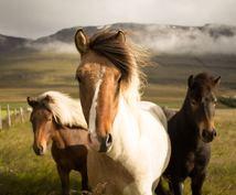 南相馬のお土産購入代行します なかなか帰郷できない方、珍しいもの好きな方に