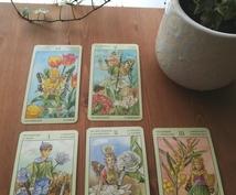 タロットでお悩みの解決策をリーディングします *かわいい花の精たちが的確なメッセージを伝えてきます*