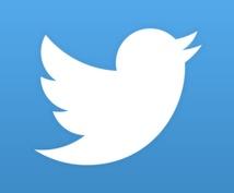 あなたの宣伝したいこと、Twitterで宣伝します 動画、サービス、サイト、ブログ、イベントなどの告知に是非!
