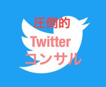 値下げ中!徹底的にTwitterコンサル致します 限定値下げ!!まだTwitterで消耗してるの!?