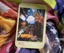 心をこめて、カードをみます あなたに必要なメッセージを1枚引きピンポイントでお伝えします