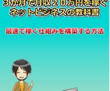 【限定】1万円で販売していた3ヶ月で20万円稼ぐ147ページのマニュアル