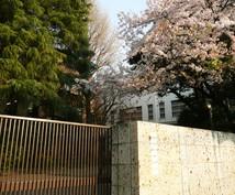 小学校受験 慶應幼稚舎 合格の秘伝を授けます 小学校お受験で慶應2校目指されている方必見!
