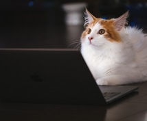 会計ソフトでの記帳代行します 〜〜忙しくて会計処理をできない方へ〜〜
