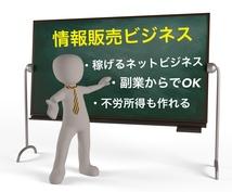 稼げるネット副業!情報発信で稼ぐ方法を教えます 未経験でもできる情報起業マニュアルを伝授