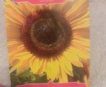 オラクルカード1カードで占います オラクルカードを使って、メッセージをお届けします。