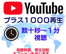 YouTube動画1000再生するまで宣伝します 動画を数十秒~1分見ていただけるように宣伝します。