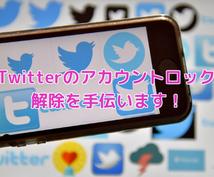Twitterのアカウントロック解除手伝います あなたの個人情報を登録せずにロック解除のお手伝いをします!
