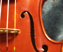 〈初級者向け〉バイオリン購入の疑問や心配事にお答えします
