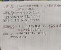 小中学生の5教科質問に対応します。