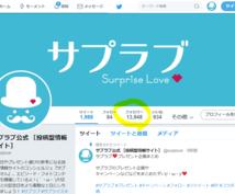 Twitterフォロワー数1000人増加保証します 【フォロワー1万人超の実績】SNSを広告媒体にしたいあなたへ