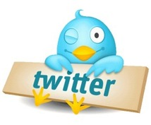 永遠とあなたのツイッターアカウントのフォロワーを増やします。月5000人ペース。おひねり込1万円