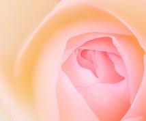 出会いや結婚に!ローズチャクラの覚醒ワークします 女性性を高め、幸せ、喜びを実現し、変容を促す錬金術です