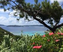 沖縄本島/石垣島/宮古島他★旅行プラン作ります 島めぐり歴12年♪離島の魅力をお教えします!