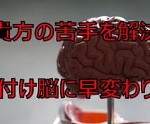 貴方の脳が片付けにおいて苦手な部分を見つけます 部屋を散らかしてしまう原因である脳を鍛えて解決!