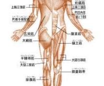遠隔ヒーリング整体で体の不調を整えます どこに行っても治らない腰痛の方、この機会にお試しください!