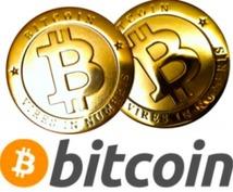 今話題のビットコインで儲かる方法教えます 国内、国外で爆発的に参加者急増中。全面的にサポートします。