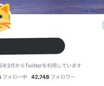 ツイッタ―日本人4.3万人に拡散します ちゃんとしたアカウントになります。