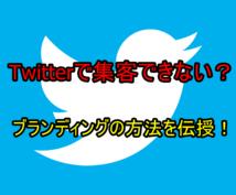 Twitterでのブランディングの仕方を教えます Twitterコンサルタントの私が細かくアドバイスします!
