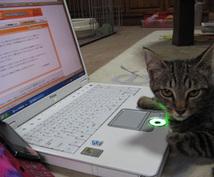 ITの困ったを即解決します システム開発、Web開発のエキスパートがお手伝いします。