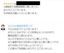YouTubeのアクセス視聴回数をアップします 通常版☆YouTube/増やす/収入/稼ぎ方/方法/カウント
