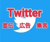 あなたのTwitterを拡散します あなたの商品を複数垢で宣伝・広告・集客!