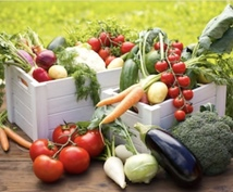 美味しい野菜づくり応援します 〜これから家庭菜園を始めてみたい方へ〜