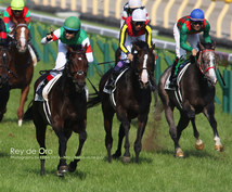 福島競馬・究極の馬券術教えます 福島競馬で低投資・高配当を望まれる方必見!!