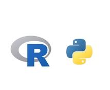 R/Pythonに関するエラー、バグを解決します 迅速にエラーの原因特定、解決を行います