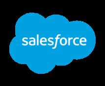 salesforceに関する質問何でも答えます ☆現役salesforce技術者がお悩み解決☆