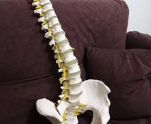 ツラい肩こりスッキリさせます 薬が手放せない、頭痛、肩こり、セルフ整体でスッキリ