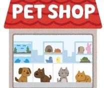 ペット業界について教えます ペット業界を検討している人必見!