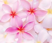 ハワイのマナカードでもどかしい恋の抜け道を探ります どんな恋もどんなふたりでも、お話しして下さいね♡