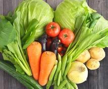 管理栄養士が、あなたの食事相談や栄養価計算をします 管理栄養士による栄養バランスの個別指導!