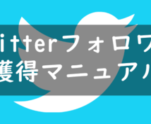 1万人のtwitterのフォロワー獲得を教えます twitterのフォロワーを増やしてマネタイズしよう