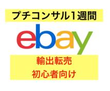 ebay輸出 ミニコンサル 動画サポートします ebay初心者向け。次のステップに進みたい方をサポート!