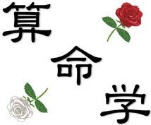 京都の占い師HAMAが贈る算命学電話占い(仕事・恋愛・結婚・金運・健康・人生など…)