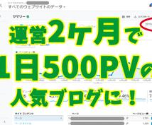 PVが伸びない、あなたのブログのコンサルします 初心者が2ヶ月で1日500pv!ブログのお悩みを解決