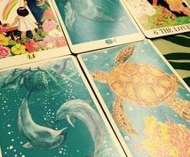 Hawaiian Tarot で占います 彼の本音、未来が気になる方へ。