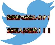Twitter複数垢で25万人に宣伝します フォロワー獲得・宣伝・集客・拡散におすすめ!!