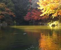 満足感タップリの『千葉県』旅行プランを作成します ディズニー以外に何があるの?魅力感じるプランを組みます!
