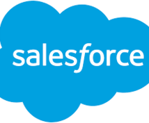 Salesforceの質問お受けします Salesforce以外にもシステム開発経験豊富です