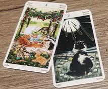 即日返信!あなたのお悩みなんでも占います ☆タロットカードを使って明るい未来を一緒に探しましょう☆